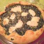 American Salted Pie Spinach and Ricotta Appetizer