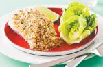American Almond And Dill Crusted Fish Recipe Appetizer