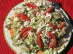 Mexican Zesty Salad With Tortilla Strips Appetizer