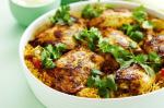 Indian Indian Curried Chicken Rice Recipe Appetizer