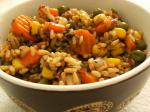 Mexican Brown Rice Pilaf 5 Appetizer