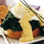 American Poached Eggs to the Florentine One Dessert
