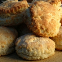 French Sourdoughs Biscuits Other
