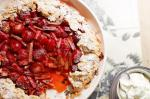 French Strawberry and Rhubarb Galette Recipe Dessert