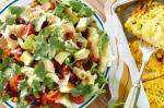 Mexican Crunchy Corn And Tortilla Salad With Tomato Dressing Recipe Appetizer