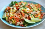 Vietnamese Vietnamese Shredded Chicken Salad  Once Upon a Chef Appetizer
