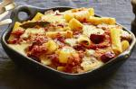 American Baked Rigatoni With Tomato And Salami Recipe Appetizer