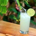 Vietnamese Lemonade Lime Appetizer