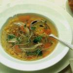 American Classic Chicken Noodle Soup Appetizer