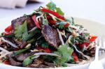Canadian Chilli Bean Sprout And Beef Salad Recipe Appetizer