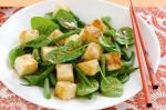 American Tofu Green Bean and Spinach Salad With Miso Dressing Recipe Dinner