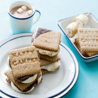 Canadian Graham Crackers and Smores Dessert