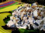 American Chicken Salad With Dried Blueberries Dinner