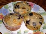 American Blueberry White Chip Muffins 1 Dessert
