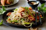 American Salmon With Snow Peas and Soba Noodles Recipe Dinner