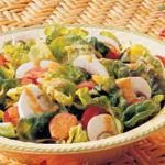 Canadian Salad with Tomatogreen Pepper Dressing Appetizer