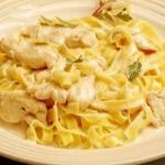 American Pasta with Chicken and Mushrooms in Cream Sauce Appetizer