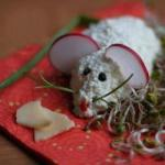 Canadian Cottage Cheese Mouse Dinner