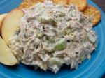 American Dill Chicken Salad Appetizer