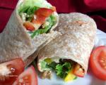 American Wrap up Lunch Appetizer