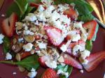 American Delicious Easy Spinach and Strawberry Salad With Feta Appetizer