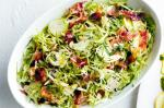 British Brussels Sprout Salad With Pancetta Parmesan And Currants Recipe Appetizer
