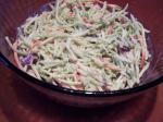 Canadian Creamy  Easy Broccoli Slaw Appetizer