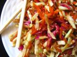 American Spicy Asian Coleslaw Appetizer