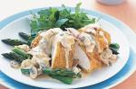 American Crumbed Chicken With Mushroom Sauce Recipe Appetizer