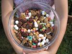 American Teddy Bear Snack Mix 1 Appetizer