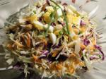 Australian Coleslaw With Peanuts and Raisins Appetizer