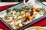 Turkish Barbecue Turkey Breast With Cranberry Sauce Recipe Appetizer