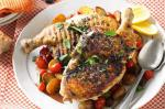 American Chargrilled Chicken Cooked Under A Brick Recipe Appetizer