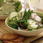 American Cucumber Salad with Radishes and Sugar Peas Appetizer