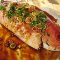 Baked Red Snapper 1 recipe