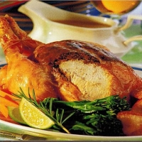 American Traditional Roast Chicken Appetizer