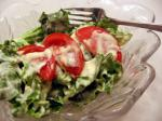 Dutch Buttermilk Salad Dressing 6 Appetizer