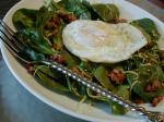 American Warm Spinach and Sausage Salad Appetizer