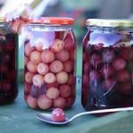 French Candied Cherries Drink