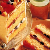 American Orange Berry Sponge Appetizer