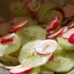 American Salad of Cucumbers and Radishes Appetizer