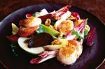 Canadian Caramelised Scallops With Beetroot Walnuts And Witlof Recipe BBQ Grill