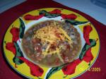 Mexican New Mexico Green Chili Stew Appetizer