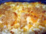 American Home Style Macaroni and Cheese W Sweet Roll Bread Crumb Topping Dessert