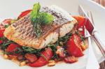 Canadian Vineripened Tomatoes And Baby Spinach Salad With Barramundi Fillet Recipe Appetizer
