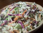 American Red  Green Coleslaw Appetizer