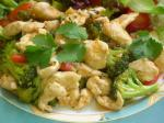 Chinese Chicken Sweet  Sour Stirfry Appetizer