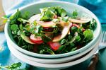 Watercress Salad With Pickled Radish And Green Apple Recipe  recipe