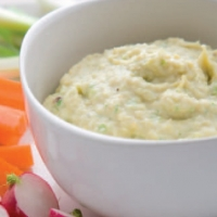 Canadian Artichoke and Scallion Dip Other