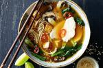 Japanese Japanese Chicken Noodle Soup With Tofu Croutons Recipe Appetizer